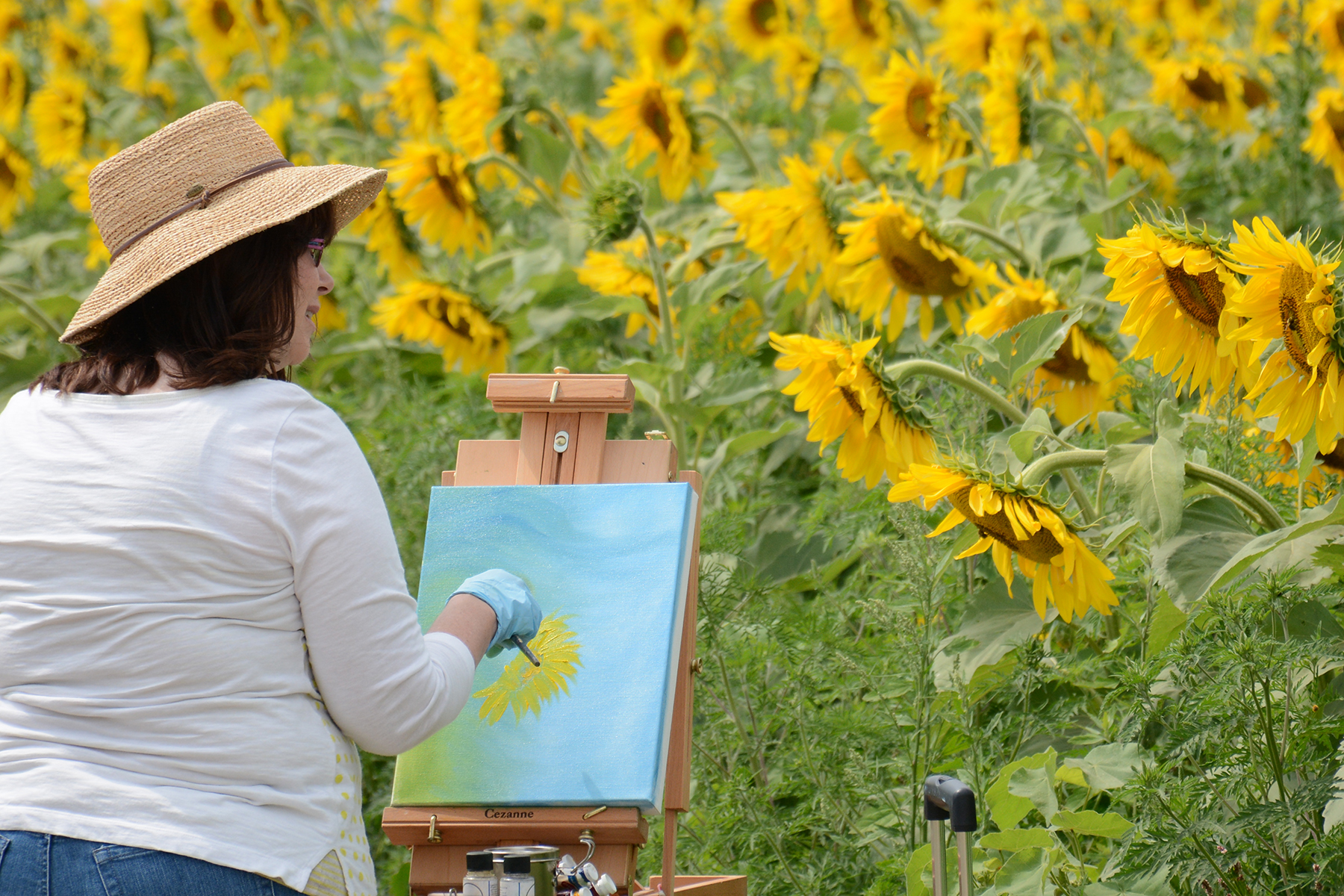 2015-08-07_Sunflower6