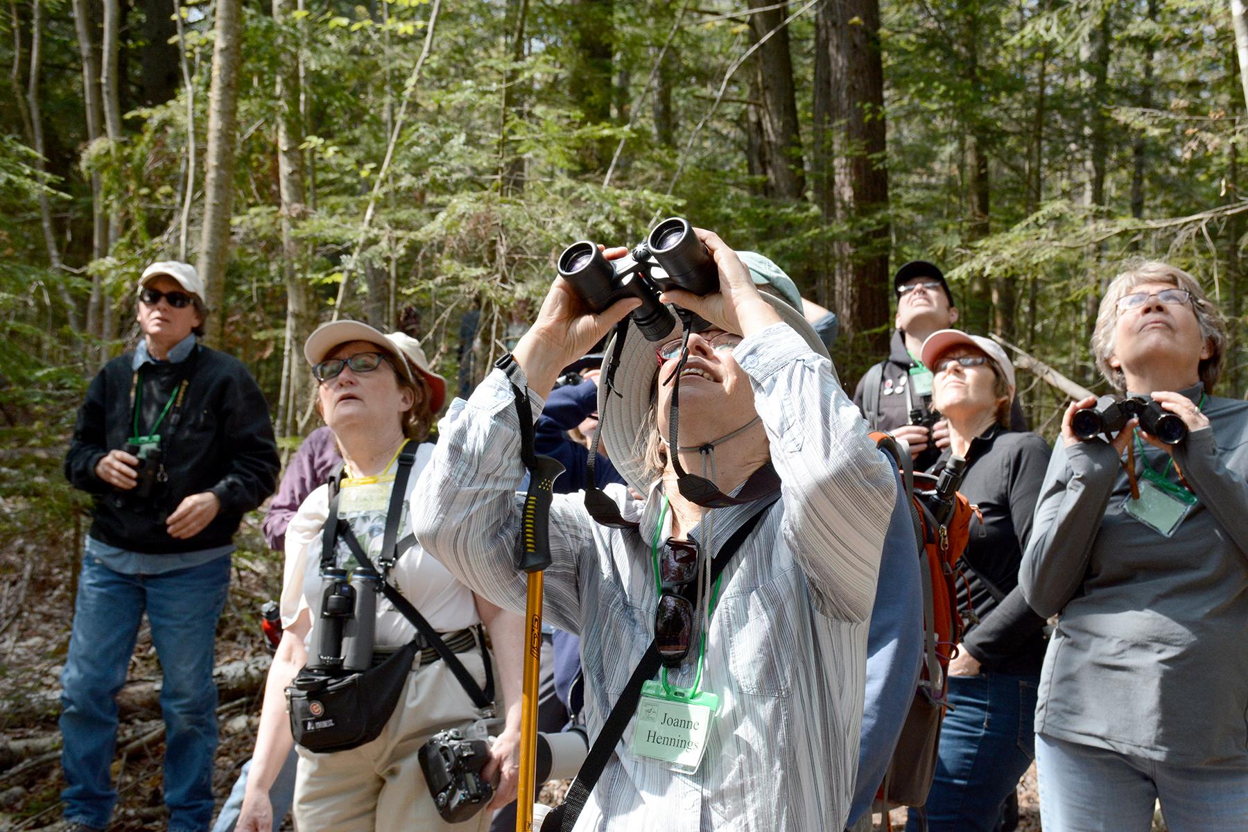2016-05-19-naturefest-warblerneck