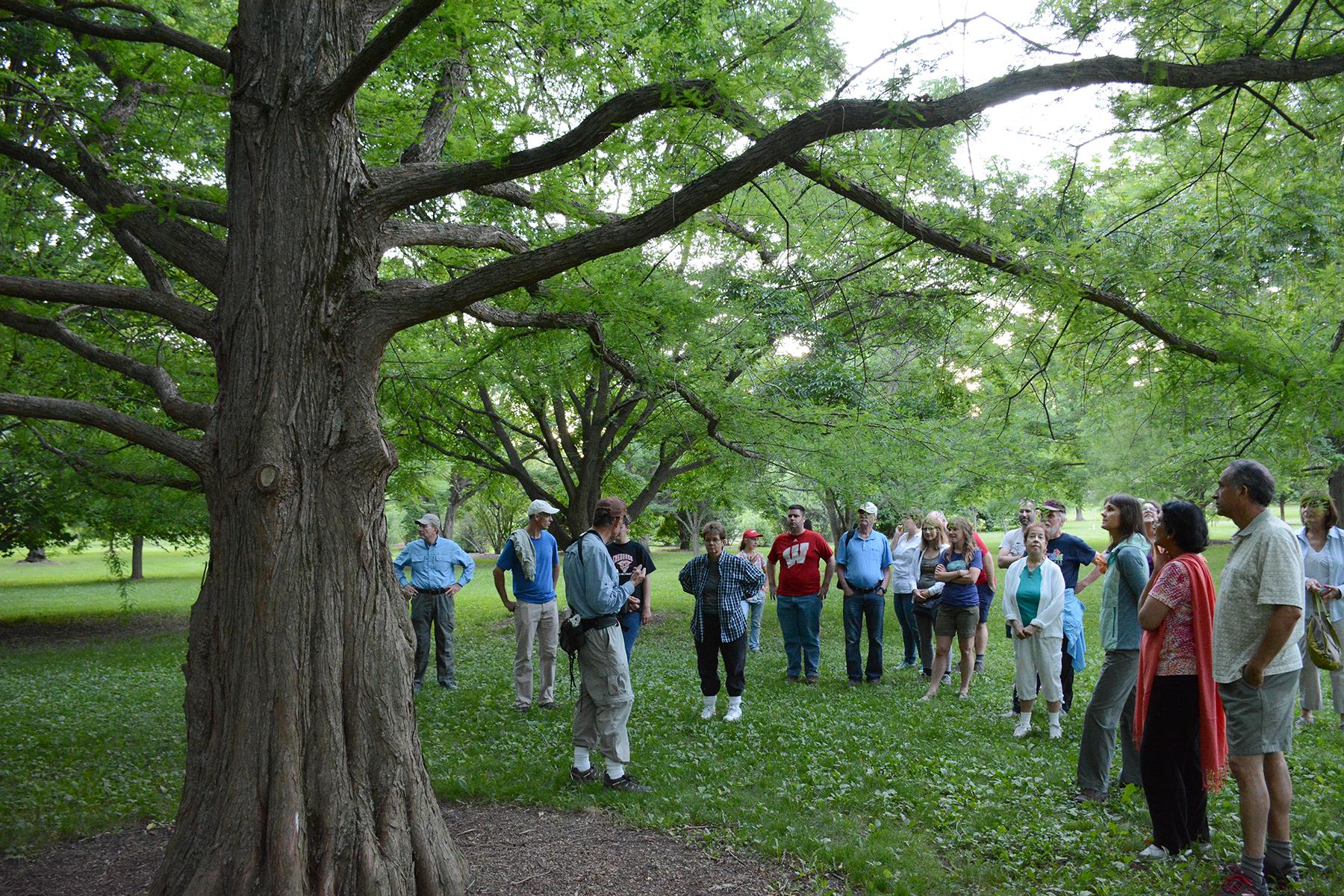 2016-06-20-nature-arboretum5