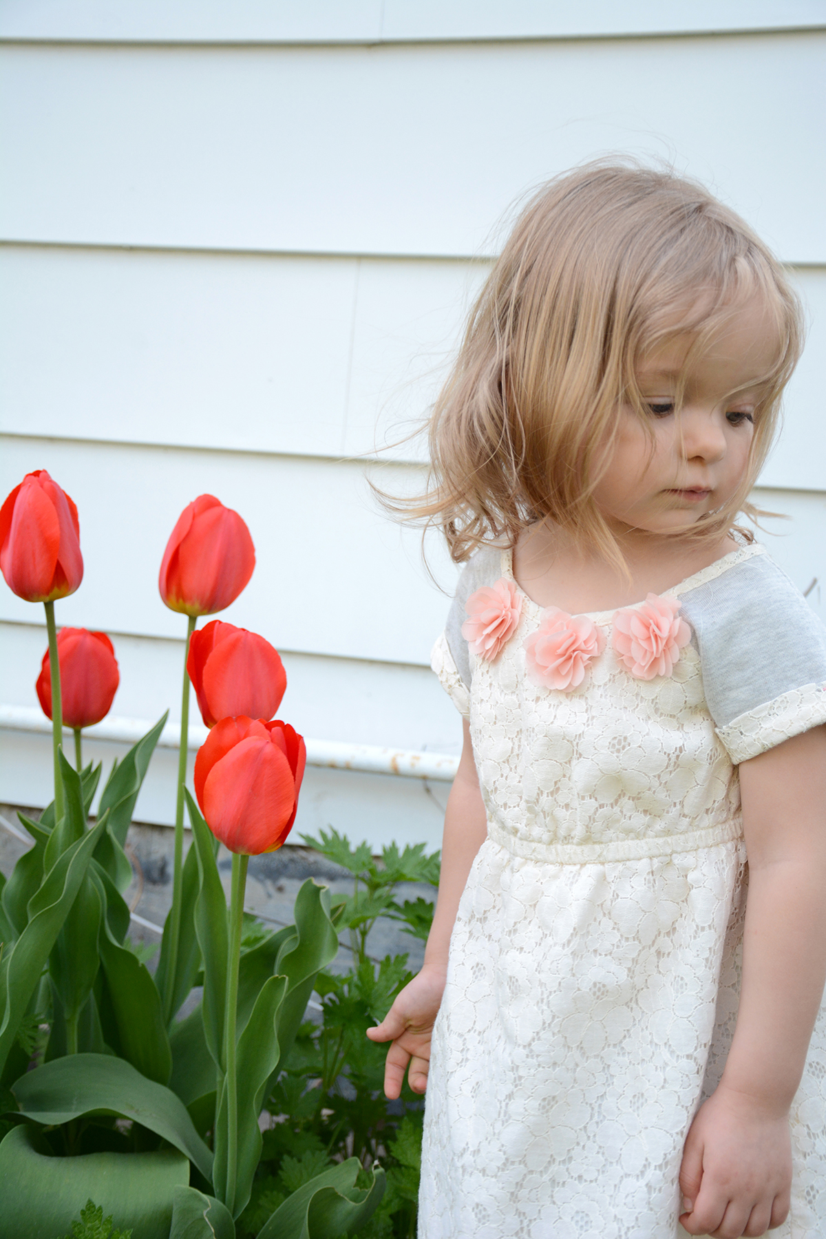 2015-05-02_family-l_paige-tulips
