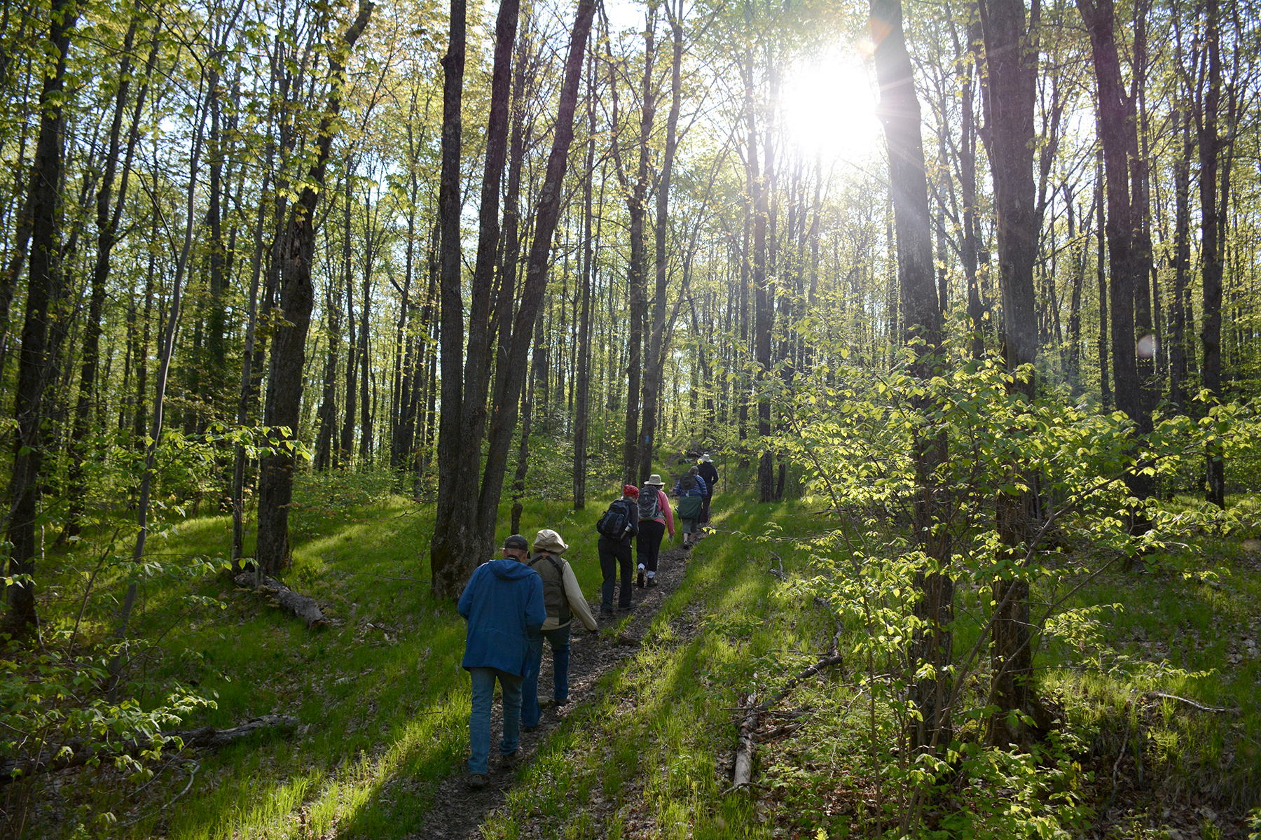2016-05-21_naturefest-hike